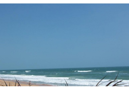 Beach Cafe - Amazing View ---PRICE REDUCED to $60K- OWNER MOTIVATED