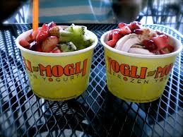 Yogli Mogli Frozen Yogurt Shop for Sale in North Fulton County