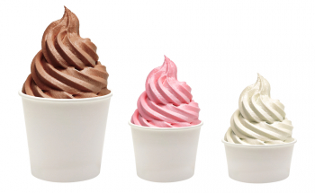 Multi-Unit Frozen Yogurt Franchises for Sale Five Stores in Charlotte Market