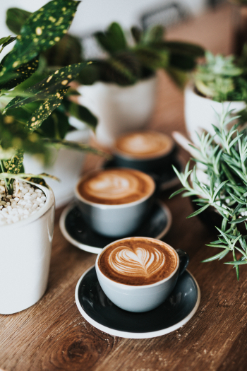 Coffee and Bakery Restaurants for Sale in Wood County Ohio!