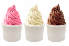 Three Store Frozen Yogurt Business for Sale Opportunity -- Charlotte, NC