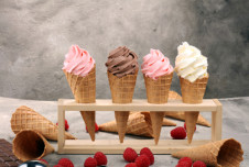 Soft Serve Ice Cream Shop For Sale On High Traffic Road In Pinellas County Florida