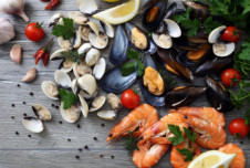 Profitable Established Tampa Waterfront Seafood Restaurant for Sale