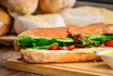 Sandwich franchise for sale in booming Ann Arbor, MI - Close to University